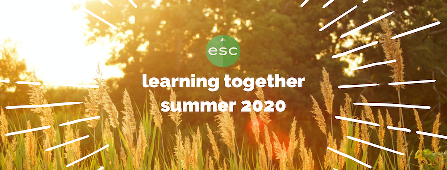 graphic: learning together summer 2020