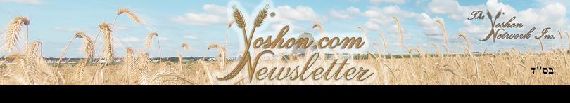 YOSHON.COM NEWSLETTER